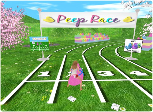 Peep Race