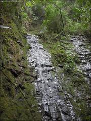 322ª Trilha 4 Cachoeiras do Parque Pinhal - Itaara RS_003