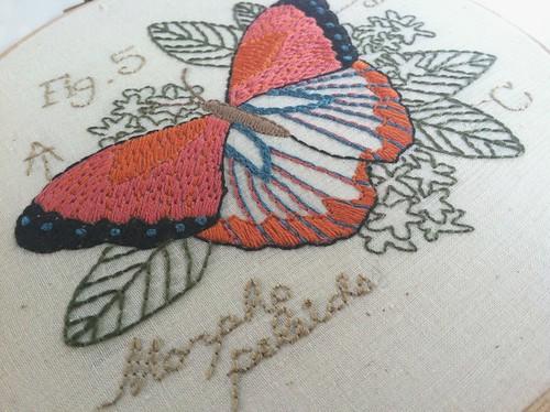 butterfly hoopart2