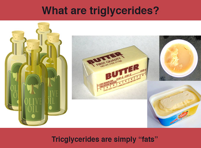What-are-triglycerides-fats