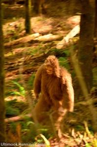 Bigfoot on the Oregon Coast