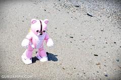 Pink Bearguy at Bangui Windmill Beach