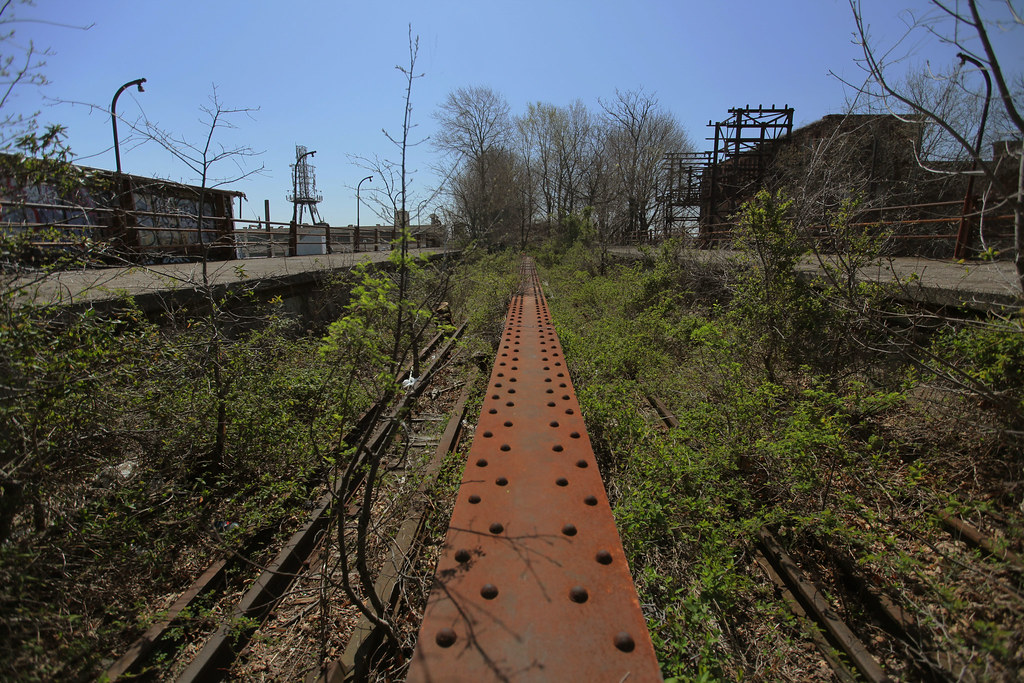 Overgrown Trestle Bridge