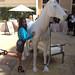 Danielle Robay - 2013-09-17 11.53.38