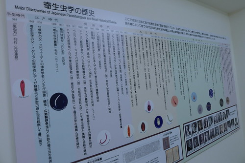 Major discoveries of Japanese parasitologists