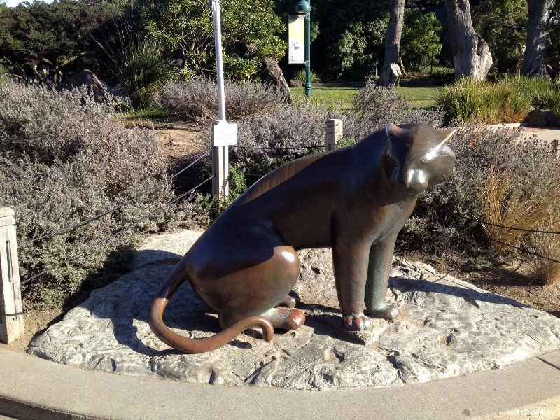 San Francisco Zoo (4)