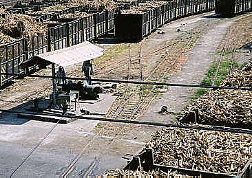 小張的部落格: 新營糖廠舊相片