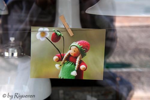 Cartoline da Friburgo....