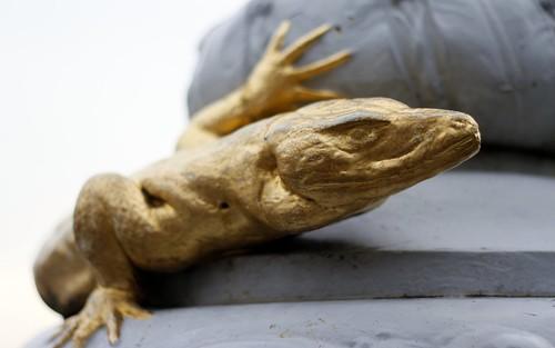 golden-lizard