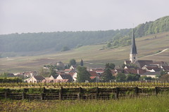 Champagne countryside, France