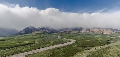 Alaska Range/Tundra,Denali