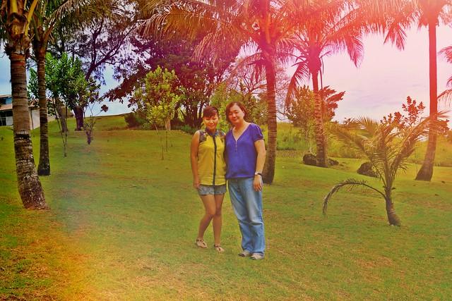Around Palm Trees