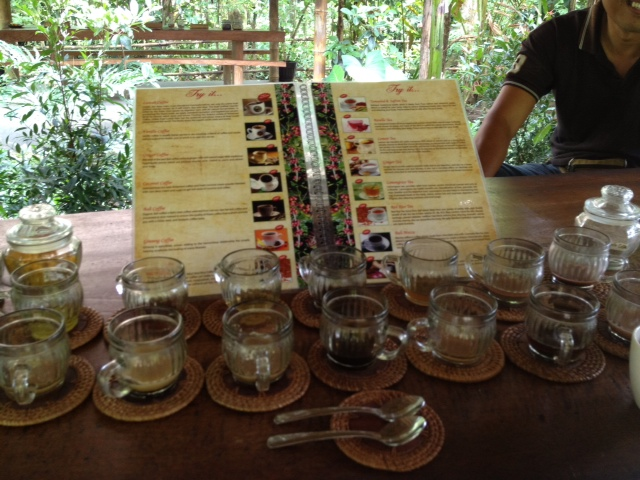 coffee samples