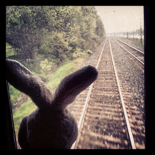 Why is leaving always so much harder? cc @via_rail #TravelBunny