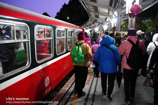到祝山站了,下車前往觀日平台。