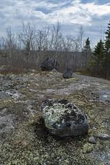 Fox Lake Trail