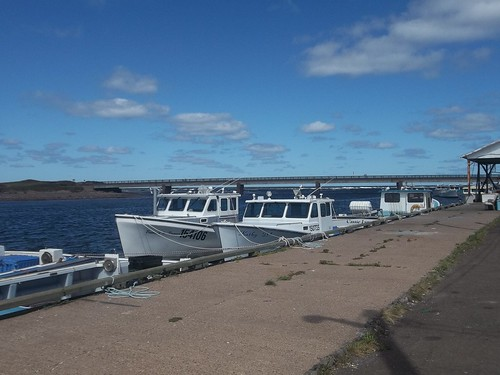 Fishing boats against the Covehead bridge, August 2013