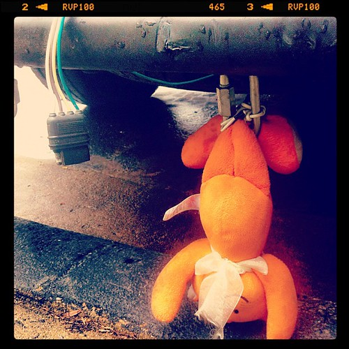 331: some Marylander that was visiting someone in the neighborhood had this hanging from his bumper. :/