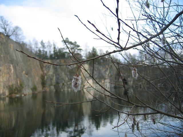 viking land, spring 2012 140