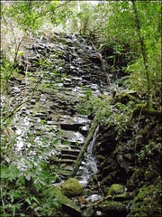 322ª Trilha 4 Cachoeiras do Parque Pinhal - Itaara RS_002