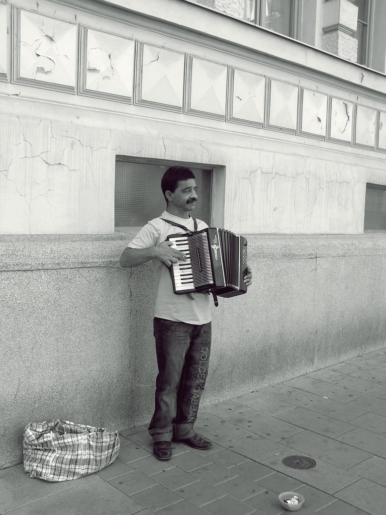 Romany Accordionist