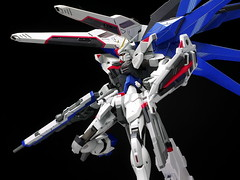 Metal Build Freedom Review 2012 Gundam PH (65)