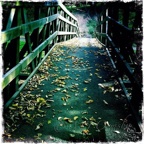 Cross that bridge #lifeinlofi #heart #imagery #crossthatbridge