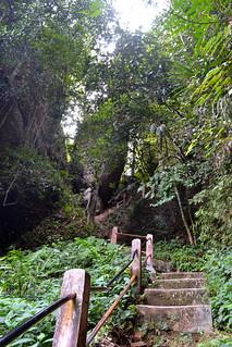 Padang - Lembah Harau 6