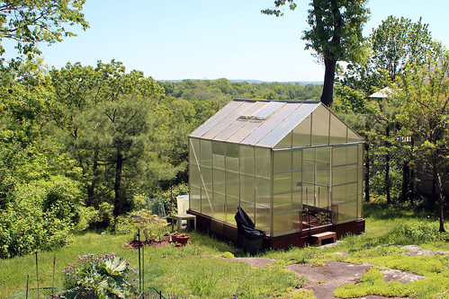 Impish M-I-L's Greenhouse