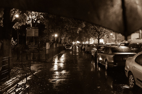 Day 153 - Rain... by Alexandru Georgescu