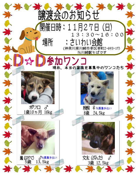 20161127_satooyakai_dd