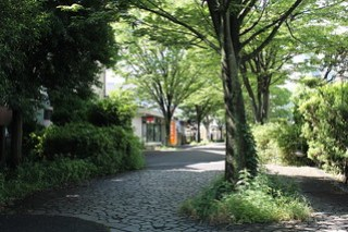 多摩聖ケ丘郵便局-聖ヶ丘遊歩道
