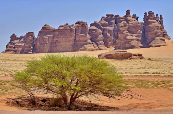 madain - saudi arabia landscape