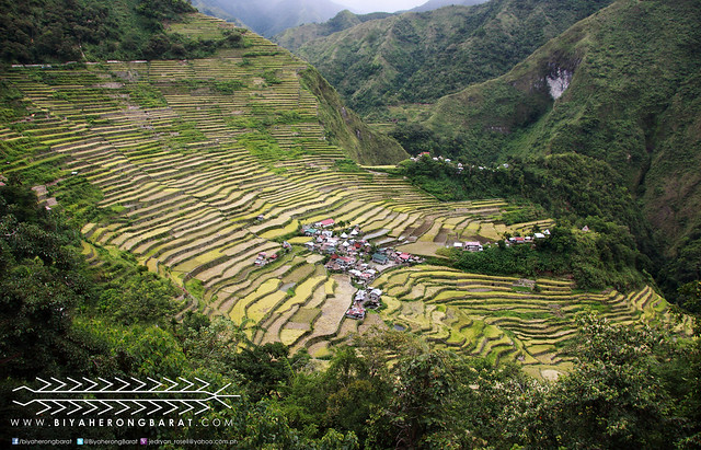 Batad Rice Terraces Ifugao Philippines