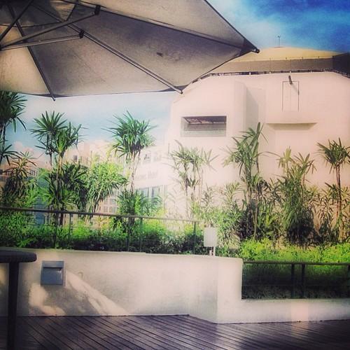 Top of the Hilton #singapore by @MySoDotCom