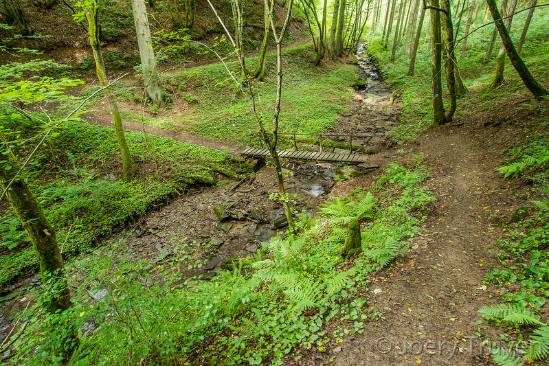 Escapardenne Eisleck trail 201308