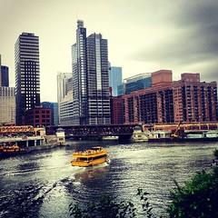 Chicago River #chigram #chicagogram
