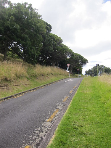 Slope up to Mount Victoria