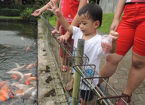Senangnya Eon Kasih Makan Ikan by adi pratama 001