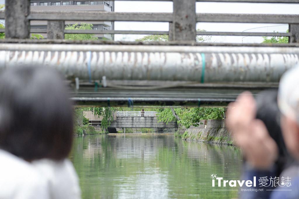 《福冈游船体验》柳川の川下り泛舟:水乡体验绕城泛舟乐趣