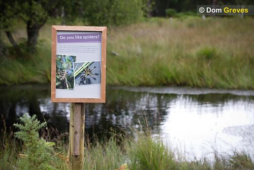 Boggy pond habitat