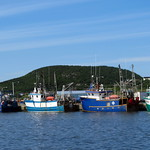 Newfoundland Fishing Boats