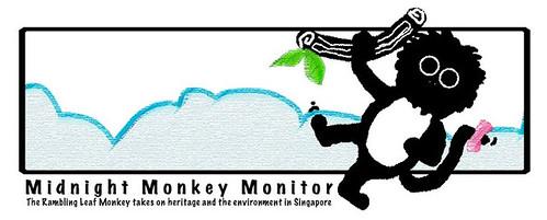 Midnight_Monkey_Monitor
