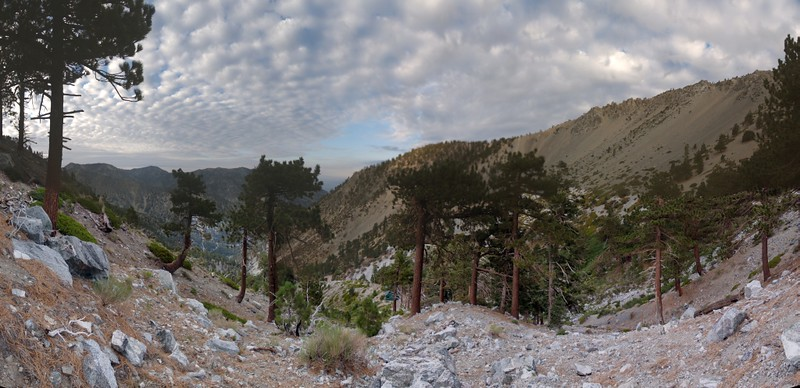 Saturday morning: Panorama view of San Antonio Canyon and the Baldy Bowl from the ridge above the Ski Hut