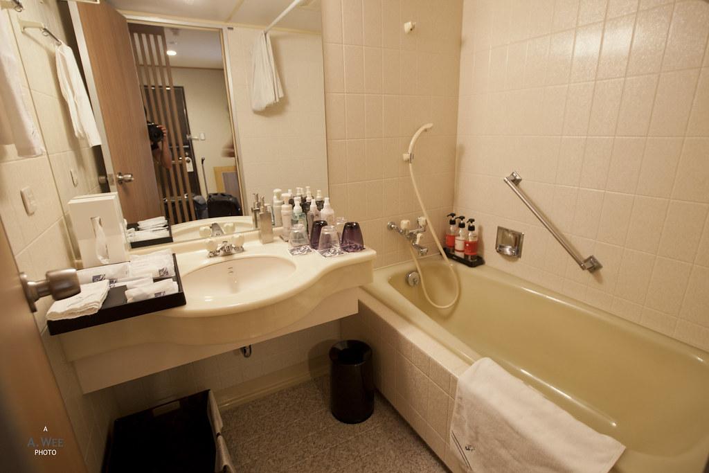 Standard Japanese Bathroom