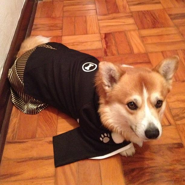 chibi com roupa tradicional japonesa de ano novo.