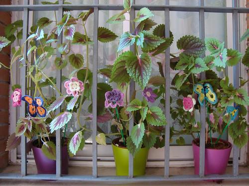 Resultado macetas con flores