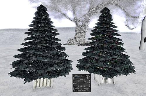 +sanctuaire+ christmas trees
