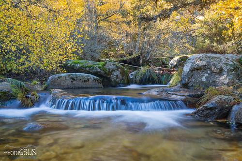 Autumn in Sierra de Guadarrama National Park