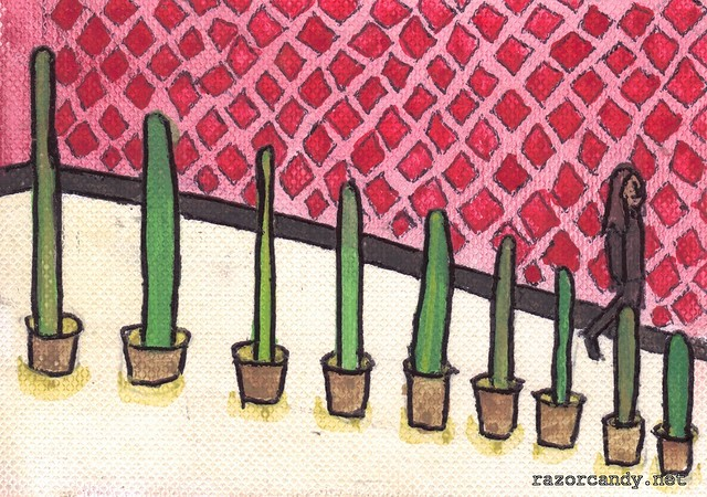 Cactus Plants (1)